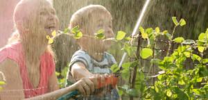 Regenwaterput-tuin-moestuin-renovatie